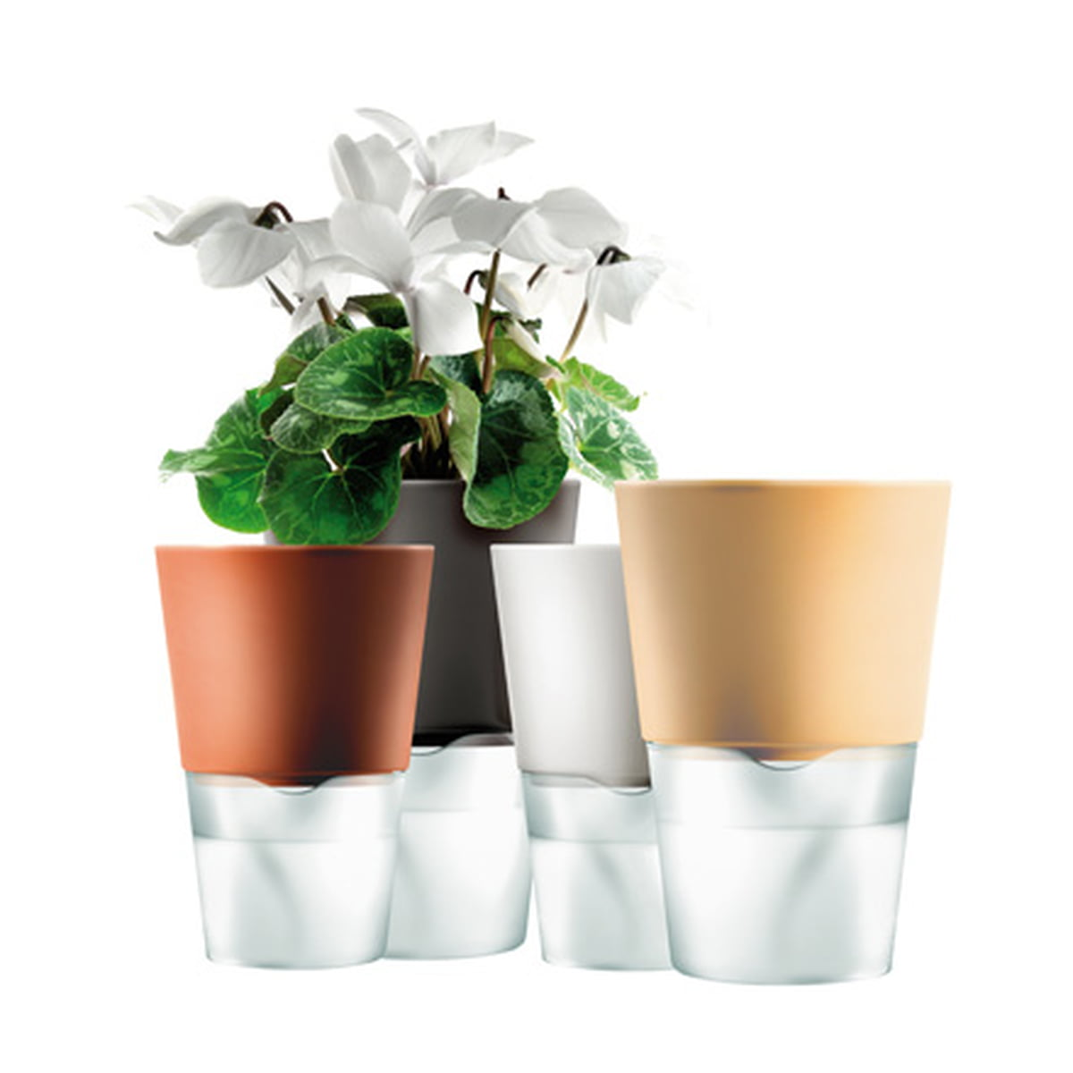 225 : self watering flower pots - startupinsights.org