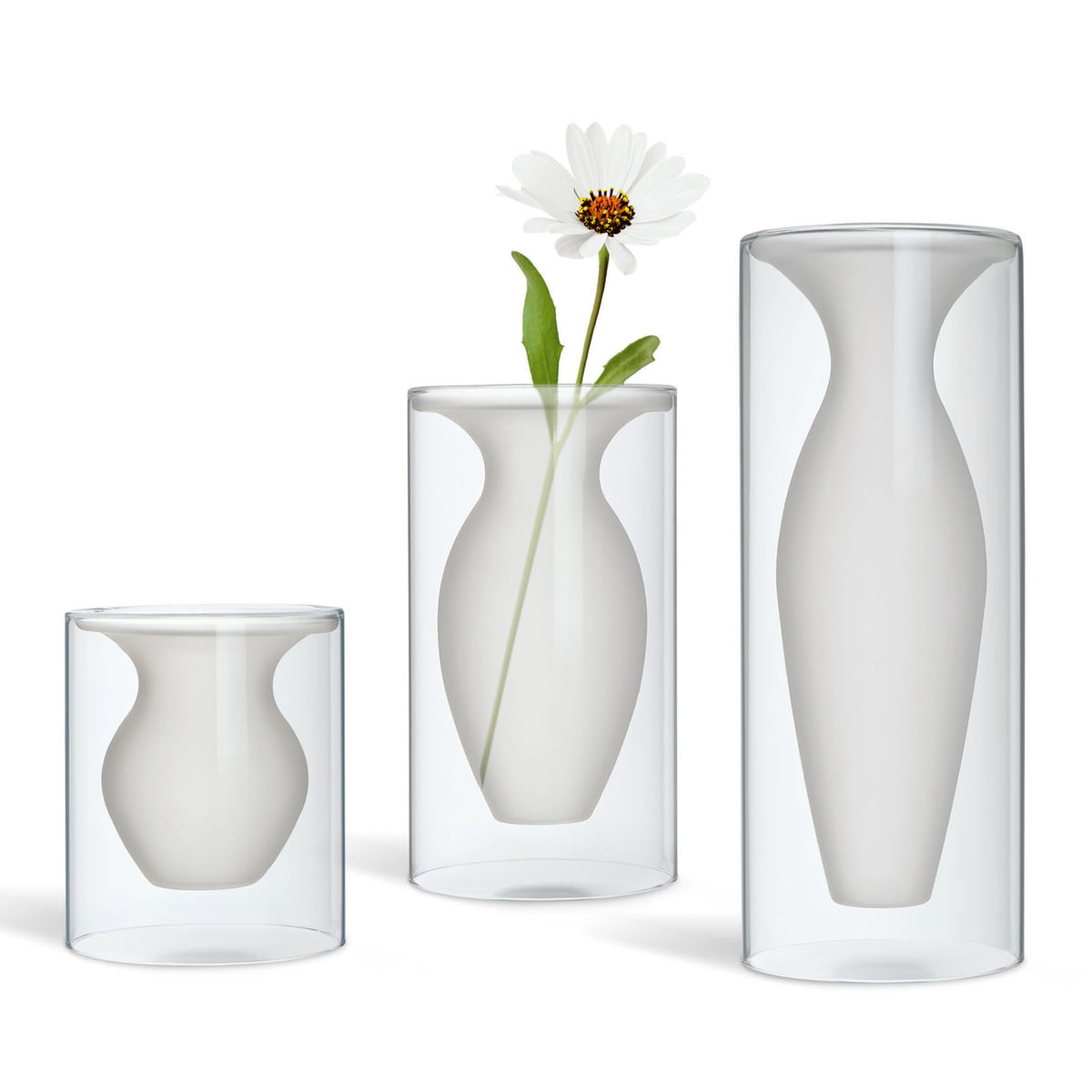 Esmeralda Vase by Philippi in the shop on ls flower, sd flower, vi flower, ca flower, na flower, mn flower, pa flower, va flower, uk flower, dz flower, ve flower, sc flower,