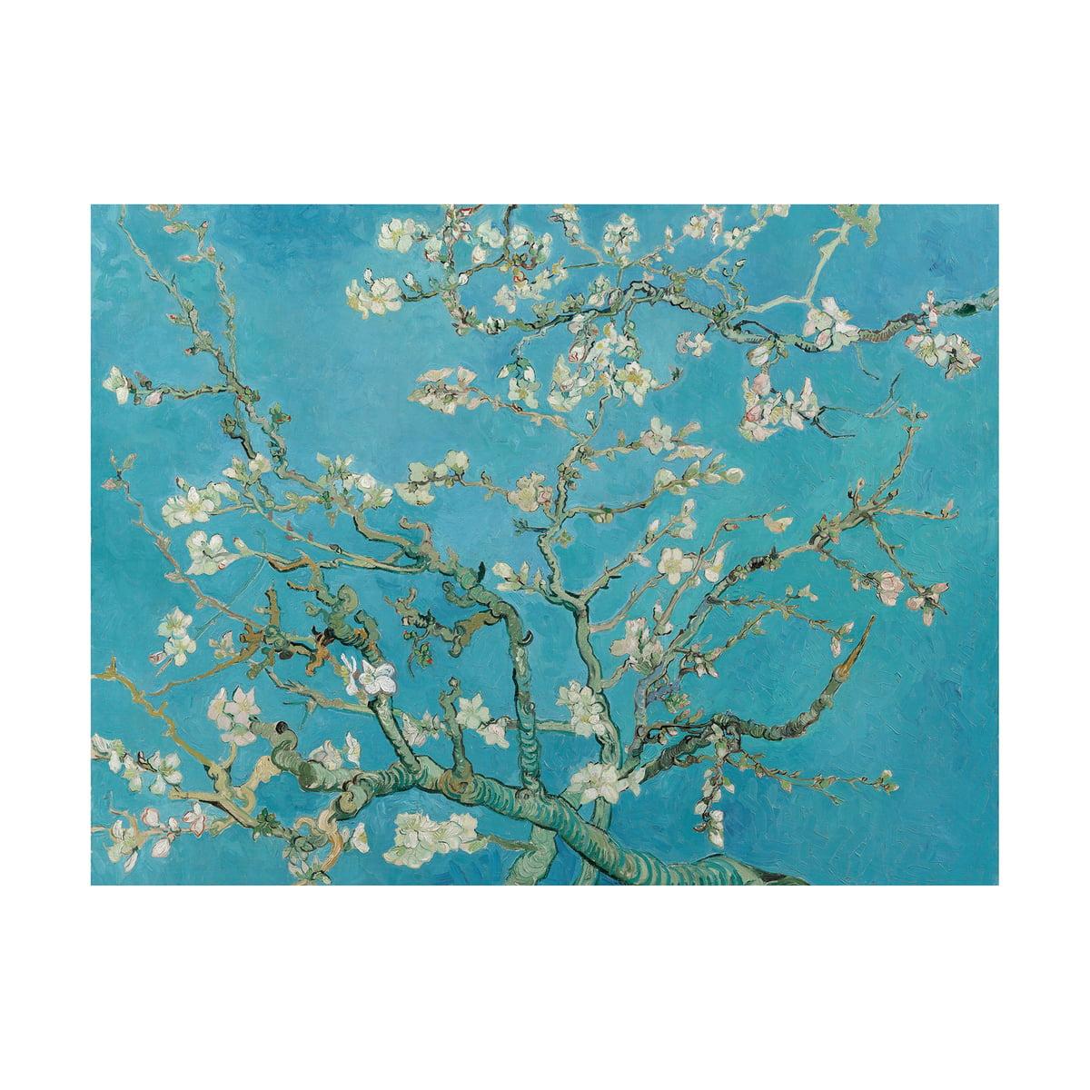 Almond Blossom (Van Gogh) by IXXI for Almond Blossom Van Gogh Poster  75tgx