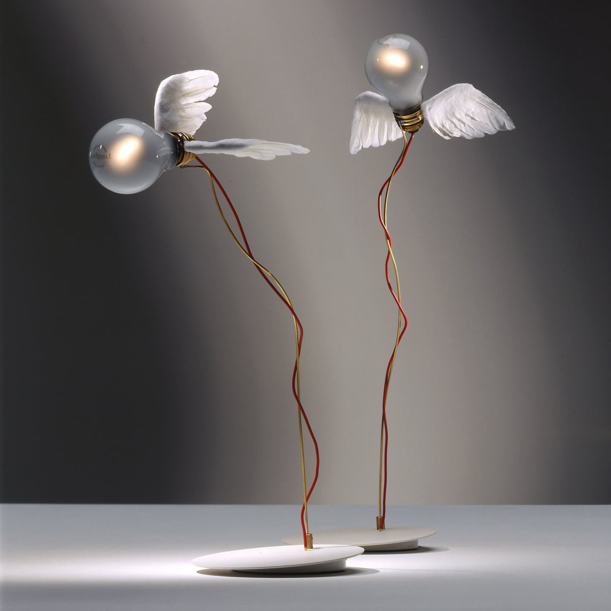 Perfect Flying Design Enchants   Ingo Maurer Lucellino Table Lamp Awesome Design