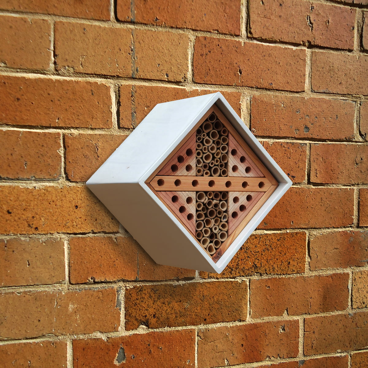 Wildlife World   Urban Bee Nester, Diamond 2