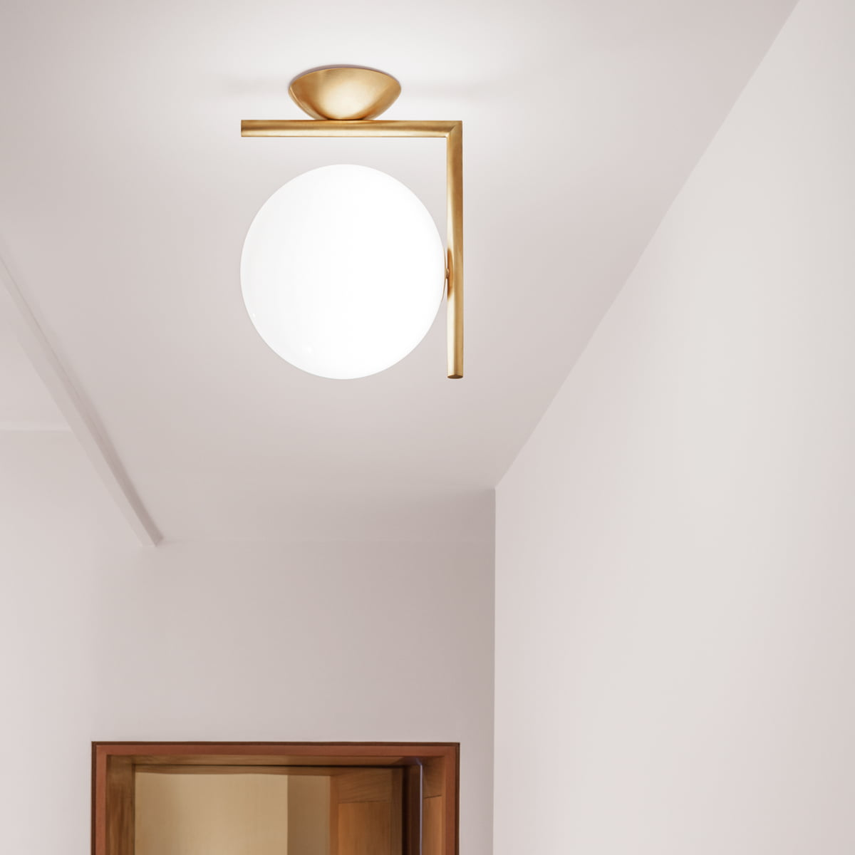 The ic wall and ceiling lamp by flos flos ic wall and ceiling lamp mozeypictures Images
