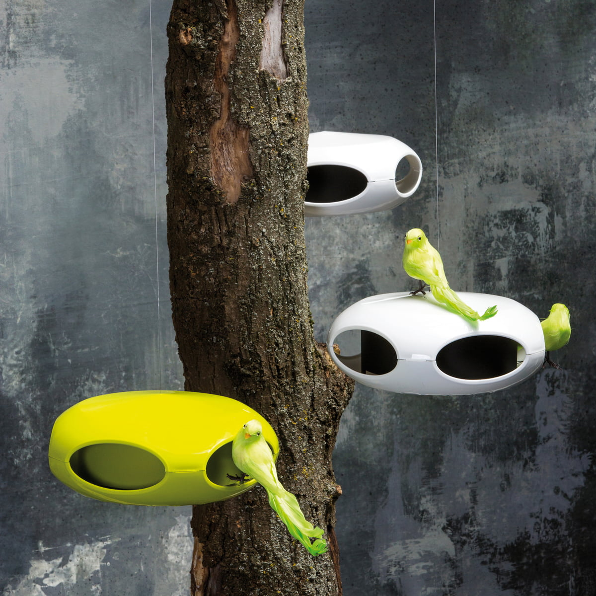Pi P Bird Feeder By Koziol In The Shop