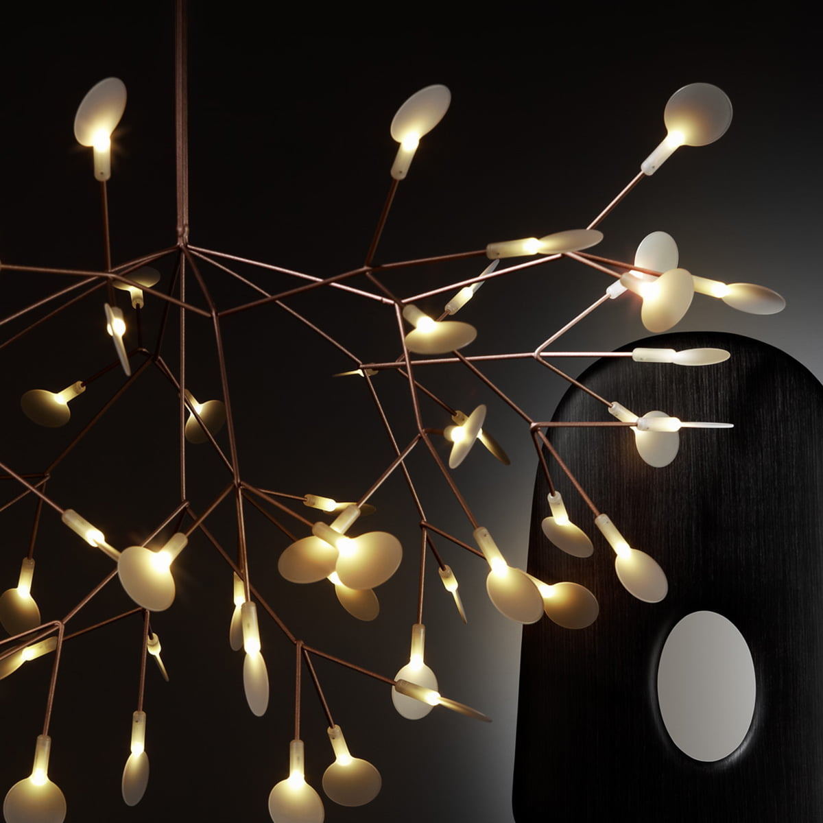 heracleum ii suspension lamp by moooi in the shop. Black Bedroom Furniture Sets. Home Design Ideas