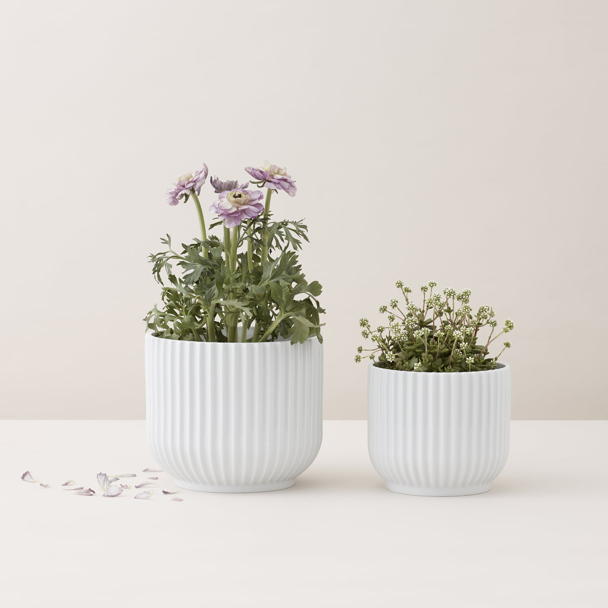 buy the flowerpotlyngby porcelæn in our shop