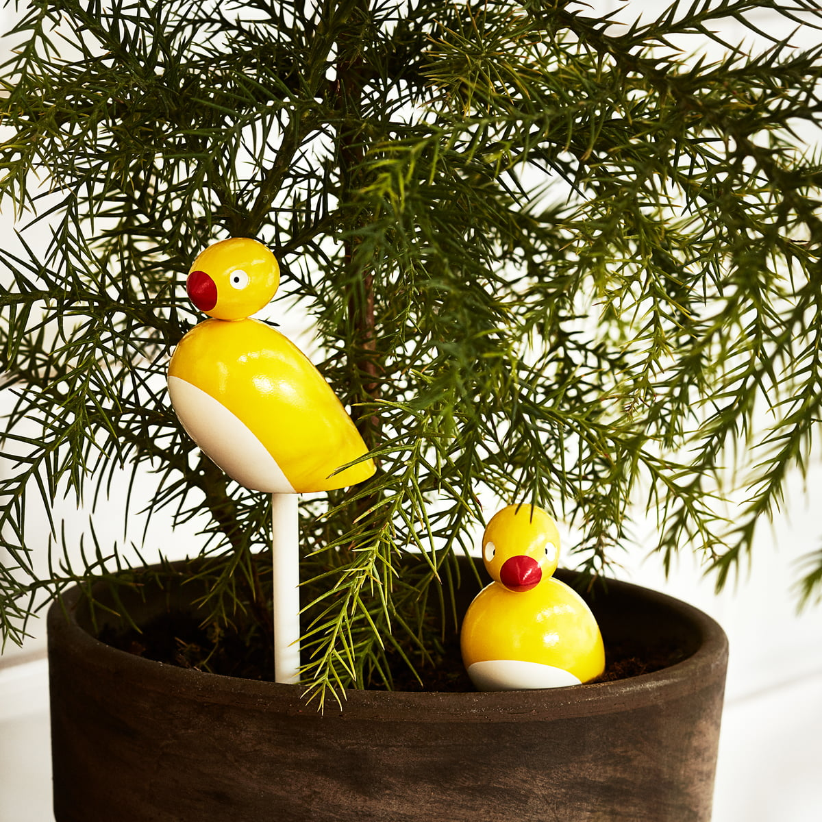 Rubber ducky bathroom decor hottest home design for Duck decorations home