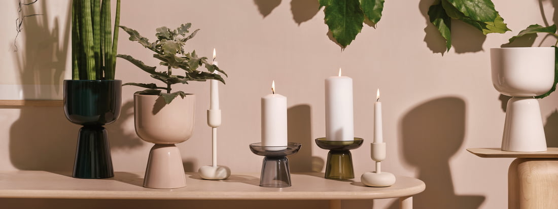 Brand of the month Iittala brand sales
