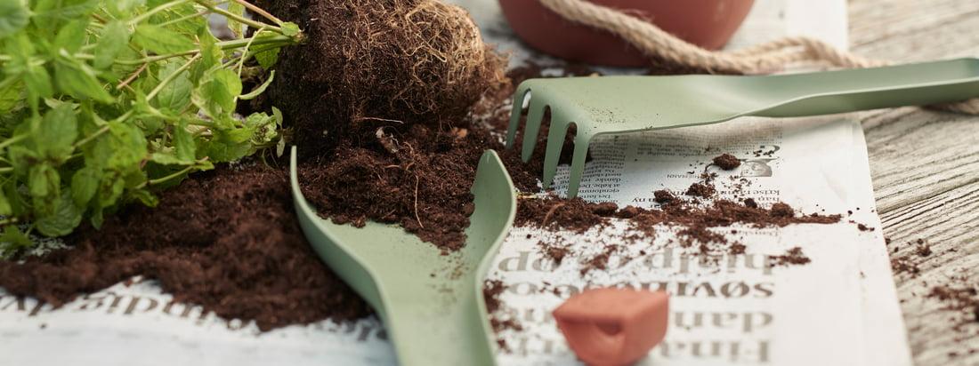 Topics: Planting - Rig-Tig by Stelton - Green-It garden tool - Single image - Garden tool-green-plant-pot
