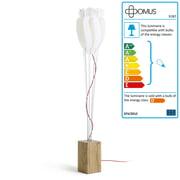 Domus - Tulip Floor Lamp