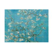 IXXI - Almond Blossom (Van Gogh)