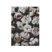 IXXI - Peony Roses (Lemholt)