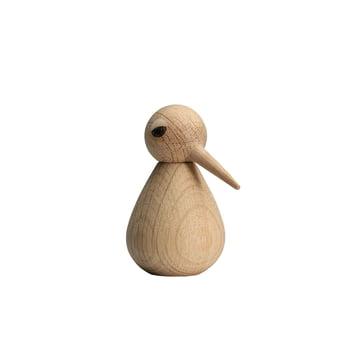 Bird small - natur