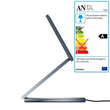 Anta Zac Table Lamp