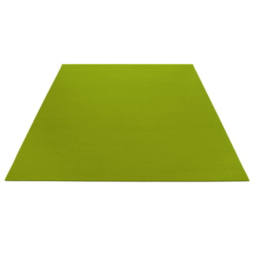 Carpet rectangular