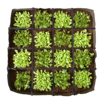 Bacsac - Bacsquare 16 plant bag