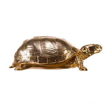 Areaware - Turtle Box, gold