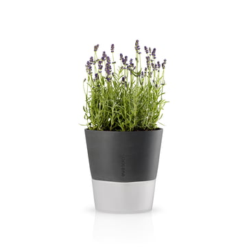 Eva Solo - Flower pot Ø 20.5 cm, stone grey
