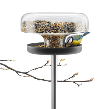 Eva Solo - Bird table, with bird food and branch