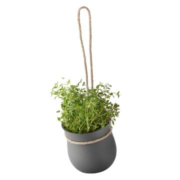 Rig-Tig by Stelton - Grow-It Herb Pot, grey