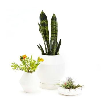 areaware - Radial Vessels vase, flower pot, planter bowl