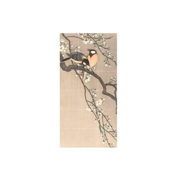 Tits on a Cherry Branch (Koson), 60 x 120 cm by IXXI
