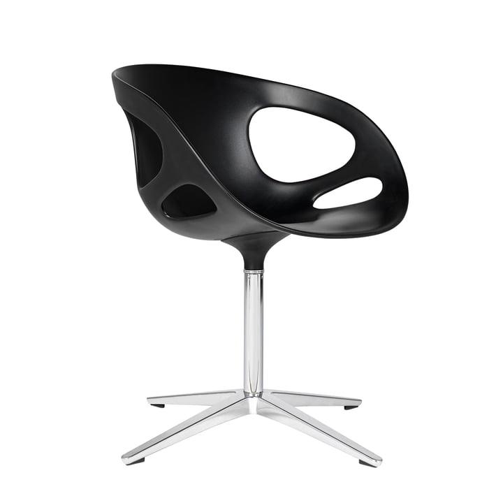 Rin Chair