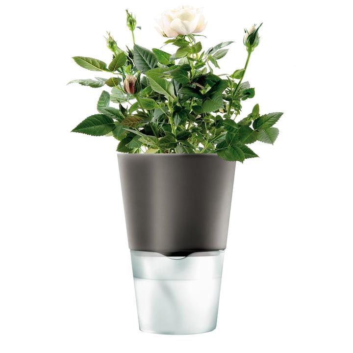 Flower Pot - small, dark grey