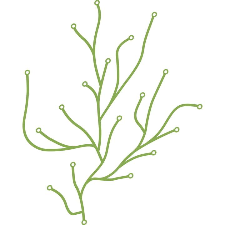Vitra Algues, green