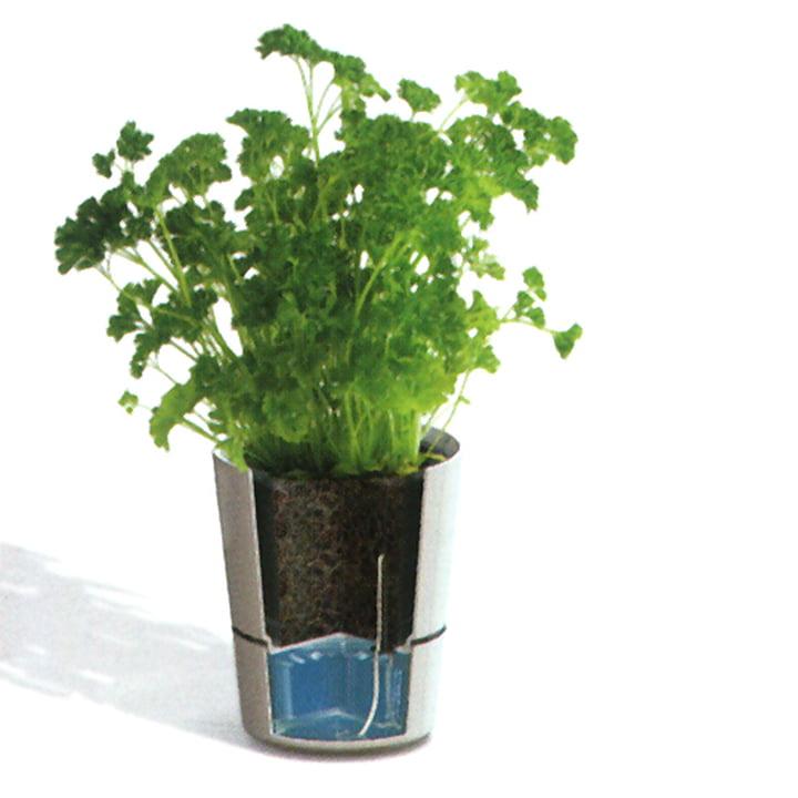 Rosti Mepal - Hydro Herb pot - Function