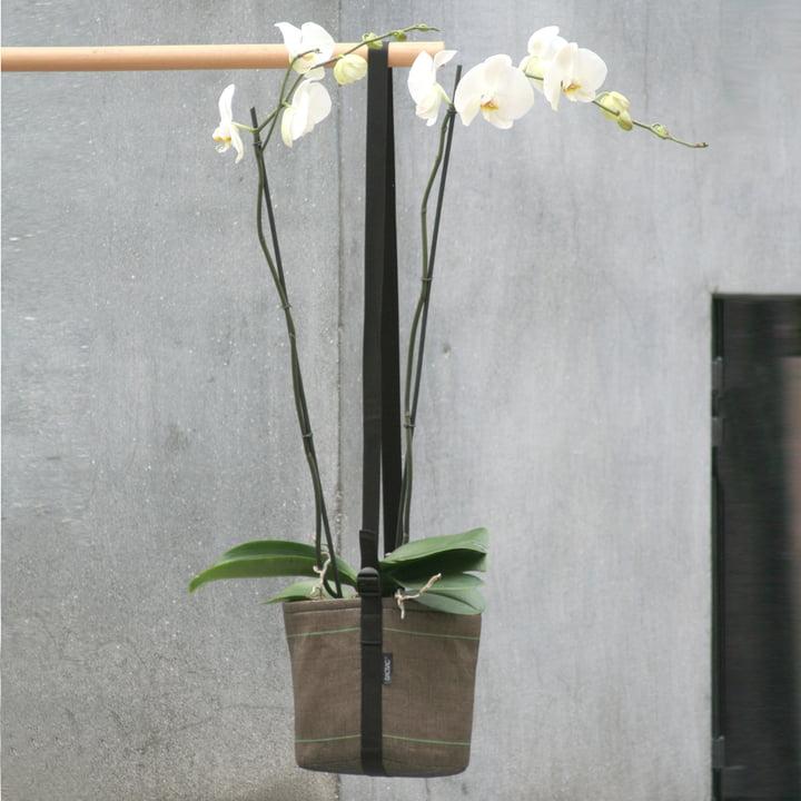 Bacsac Pot Suspendu hanging bag - orchid