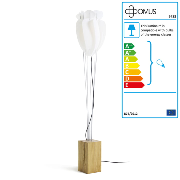 Domus - Tulip Floor Lamp - oiled oak, anthracite cable