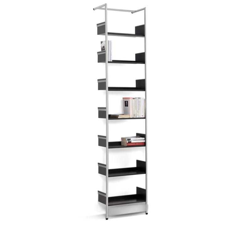 Mox - Medium Pool Lean Shelf