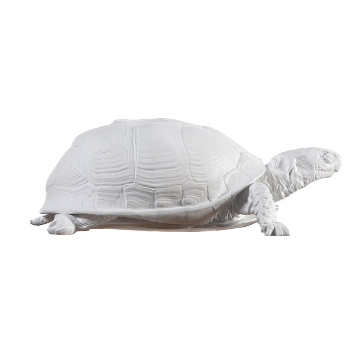 Areaware - Turtle Box, white