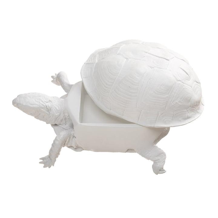 Areaware - Turtle Box, white - open