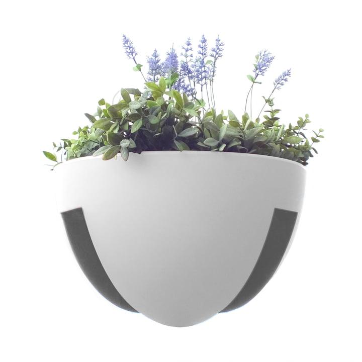 rephorm - Eckling Planter, white