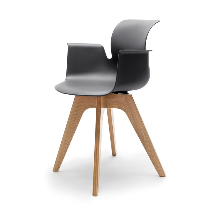 Flötotto - Pro 6 Armchair, four-star wooden frame oak nature, clear lacquered, black