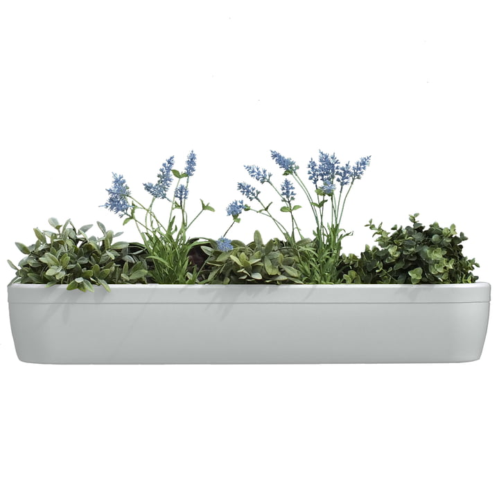 The windowgreen window sill Flower-Box by rephorm in white