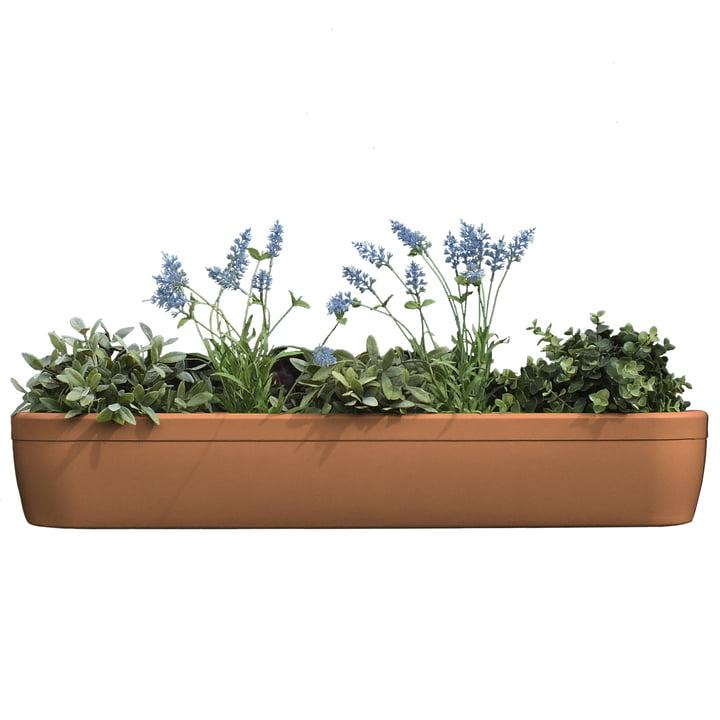 The windowgreen window sill Flower-Box by rephorm in terracotta