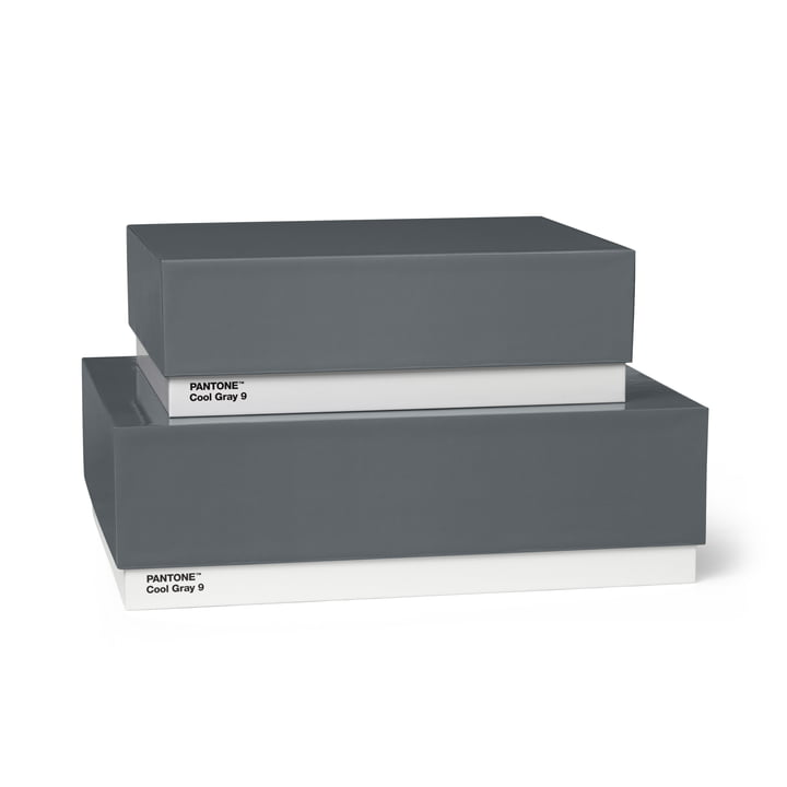Storage Box Set of 2 by Pantone Universe in Cool Gray (9)