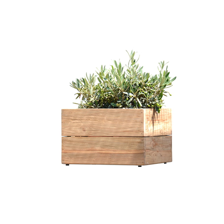 Flowerpot Minigarden in natural teak without frame from Jan Kurtz in Medium