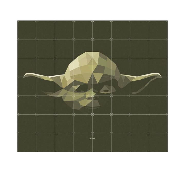 Star Wars Icon: Yoda by IXXI in 160 x 140 cm