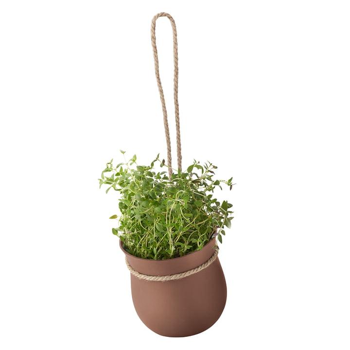 Rig-Tig by Stelton - Grow-It Herb Pot, terracotta