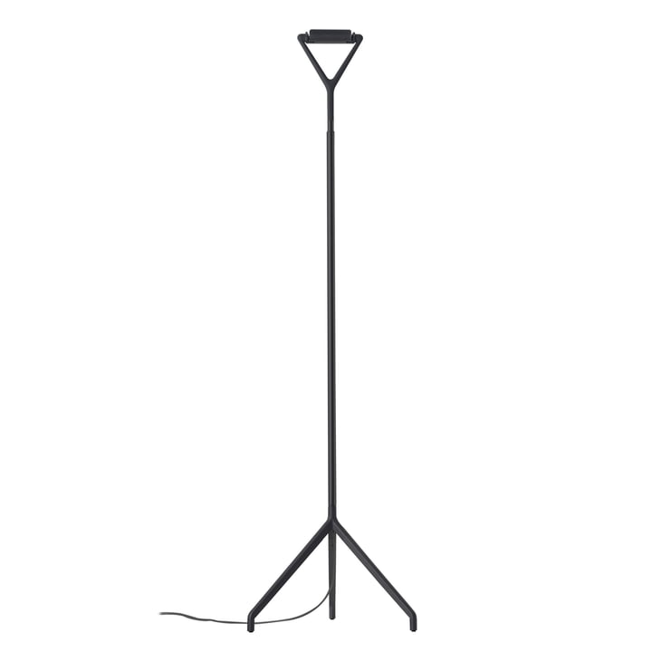 Luceplan - Lola Floor Lamp D15 ND, Black
