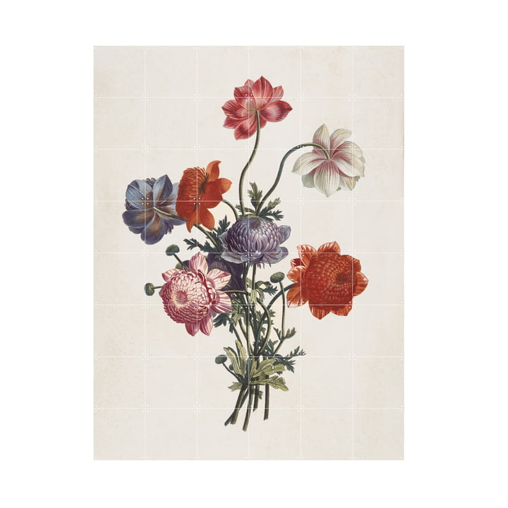 Bouquet of Anemones (Ruotte), 120 x 160 cm by IXXI