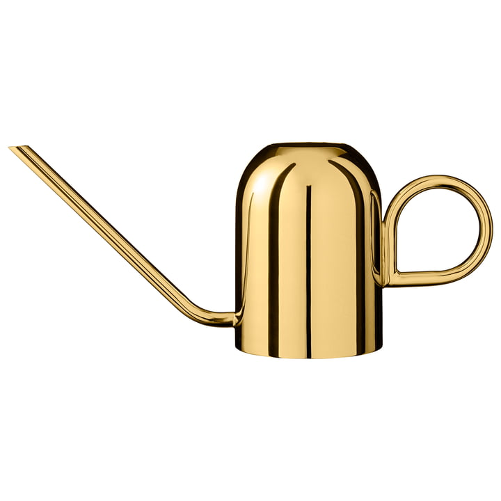 Vivero watering can in brass by AYTM