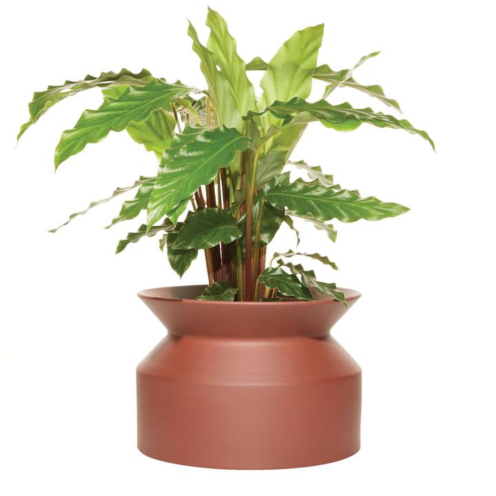 Spool plant pot Large by Boskke in terracotta