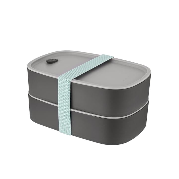 Leo Double Bento Box from Berghoff