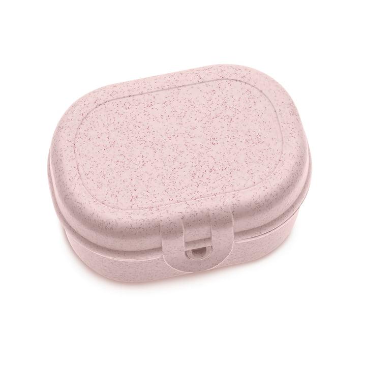 Pascal Mini lunchbox in organic pink by Koziol