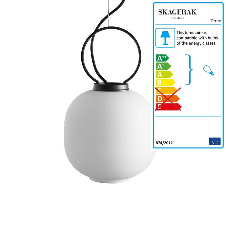 Terne pendant luminaire Ø 22×H 36 cm from Skagerak in black