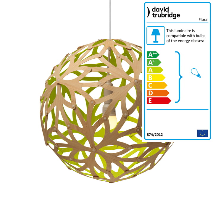 Floral pendant lamp Ø 60 cm by David Trubridge in nature/ lime green